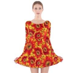 Gerbera Flowers Blossom Bloom Long Sleeve Velvet Skater Dress