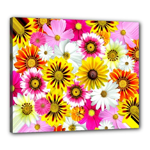 Flowers Blossom Bloom Nature Plant Canvas 24  x 20