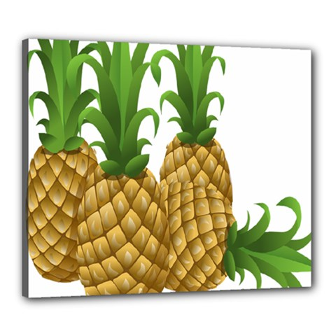 Pineapples Tropical Fruits Foods Canvas 24  x 20