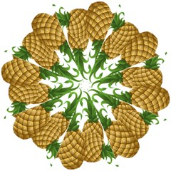 Pineapples Tropical Fruits Foods Straight Umbrellas