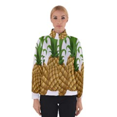 Pineapples Tropical Fruits Foods Winterwear