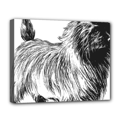 Cairn Terrier Greyscale Art Deluxe Canvas 20  x 16