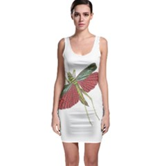 Grasshopper Insect Animal Isolated Sleeveless Bodycon Dress