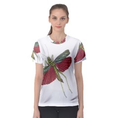 Grasshopper Insect Animal Isolated Women s Sport Mesh Tee