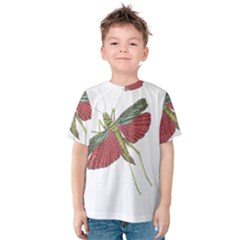Grasshopper Insect Animal Isolated Kids  Cotton Tee