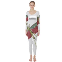 Grasshopper Insect Animal Isolated Long Sleeve Catsuit