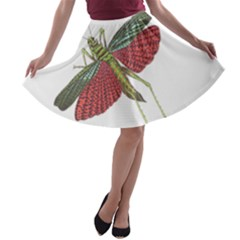 Grasshopper Insect Animal Isolated A Line Skater Skirt