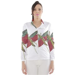 Grasshopper Insect Animal Isolated Wind Breaker (Women)