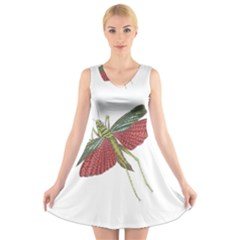 Grasshopper Insect Animal Isolated V Neck Sleeveless Skater Dress