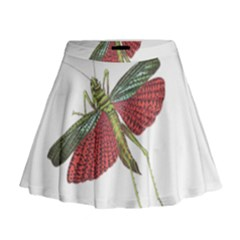 Grasshopper Insect Animal Isolated Mini Flare Skirt