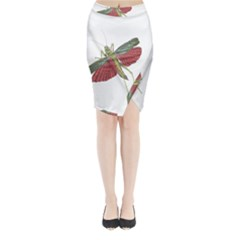 Grasshopper Insect Animal Isolated Midi Wrap Pencil Skirt