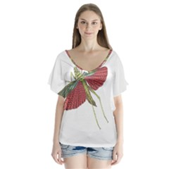 Grasshopper Insect Animal Isolated Flutter Sleeve Top