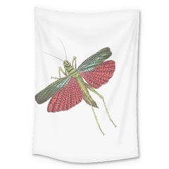 Grasshopper Insect Animal Isolated Large Tapestry