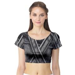 Backdrop Belt Black Casual Closeup Short Sleeve Crop Top (tight Fit)
