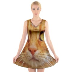 Cat Red Cute Mackerel Tiger Sweet V Neck Sleeveless Skater Dress