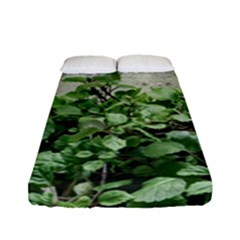 Plants Against Concrete Wall Background Fitted Sheet (Full/ Double Size)