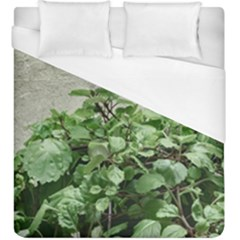 Plants Against Concrete Wall Background Duvet Cover (King Size)