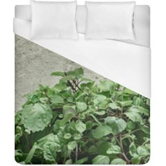 Plants Against Concrete Wall Background Duvet Cover (California King Size)