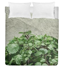 Plants Against Concrete Wall Background Duvet Cover Double Side (Queen Size)