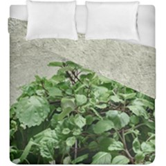 Plants Against Concrete Wall Background Duvet Cover Double Side (King Size)