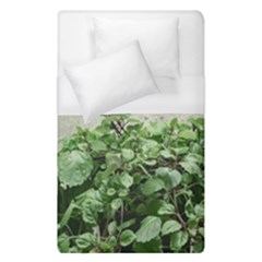 Plants Against Concrete Wall Background Duvet Cover (Single Size)