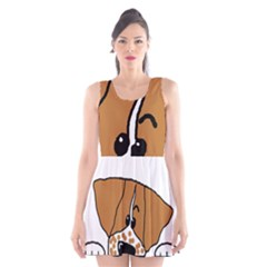 Peeping Brittany Spaniel Scoop Neck Skater Dress