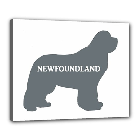 Newfie Name Silo Grey Canvas 20  x 16