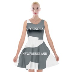 Newfie Name Silo Grey Velvet Skater Dress