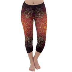 Floral Kaleidoscope Capri Winter Leggings