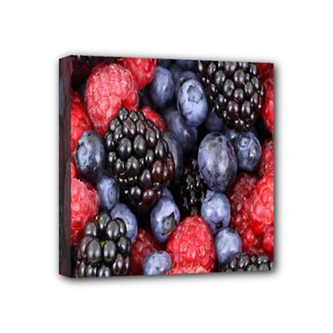 Forest Fruit Mini Canvas 4  x 4