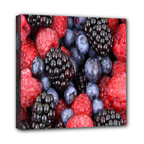 Forest Fruit Mini Canvas 8  x 8