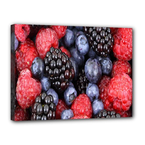 Forest Fruit Canvas 16  x 12