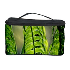 Fern Ferns Green Nature Foliage Cosmetic Storage Case
