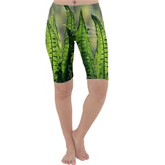 Fern Ferns Green Nature Foliage Cropped Leggings
