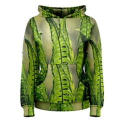 Fern Ferns Green Nature Foliage Women s Pullover Hoodie