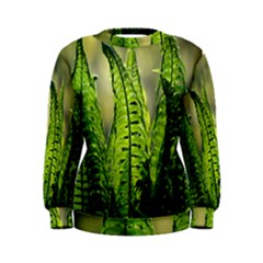 Fern Ferns Green Nature Foliage Women s Sweatshirt