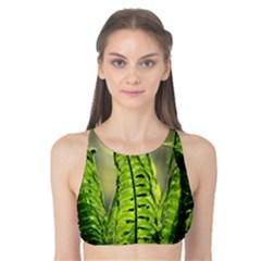 Fern Ferns Green Nature Foliage Tank Bikini Top