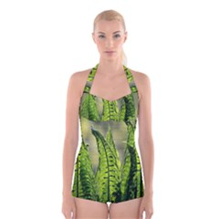 Fern Ferns Green Nature Foliage Boyleg Halter Swimsuit
