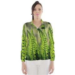 Fern Ferns Green Nature Foliage Wind Breaker (women)