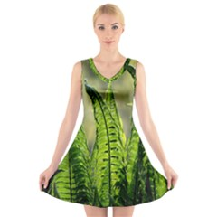 Fern Ferns Green Nature Foliage V Neck Sleeveless Skater Dress