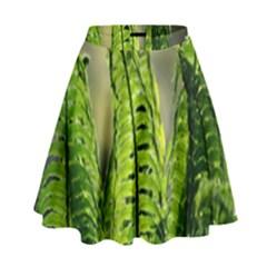 Fern Ferns Green Nature Foliage High Waist Skirt