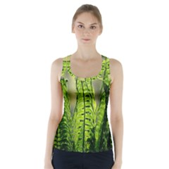 Fern Ferns Green Nature Foliage Racer Back Sports Top