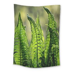 Fern Ferns Green Nature Foliage Medium Tapestry
