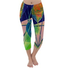 New Form Technology Capri Winter Leggings