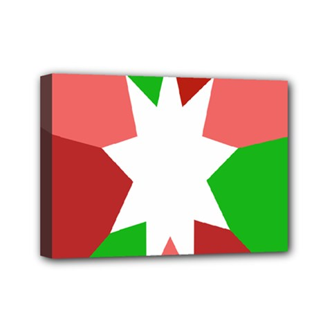Star Flag Color Mini Canvas 7  x 5