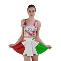 Star Flag Color Mini Skirt