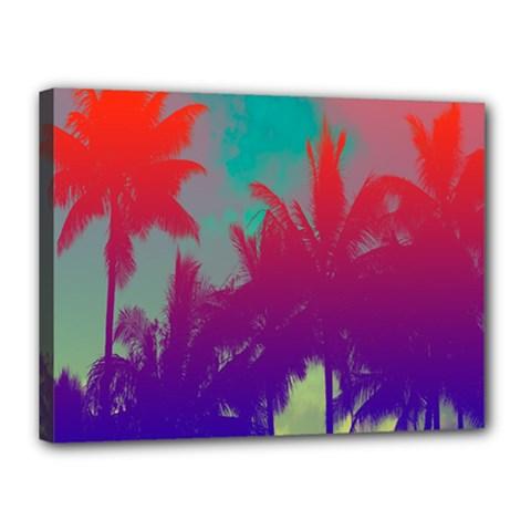Tropical Coconut Tree Canvas 16  x 12