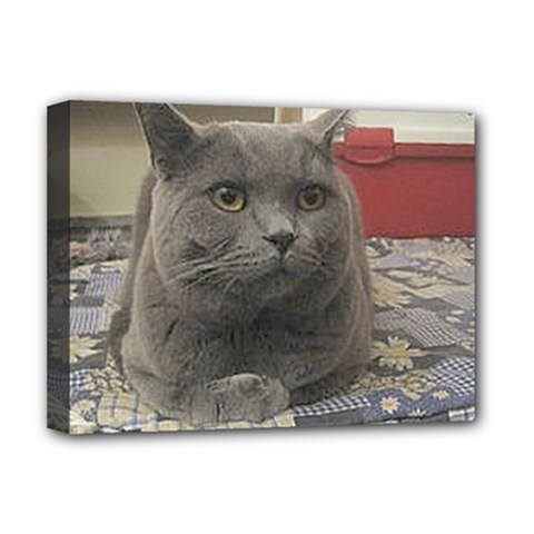 British Shorthair Grey Deluxe Canvas 16  x 12