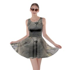 British Shorthair Grey Skater Dress