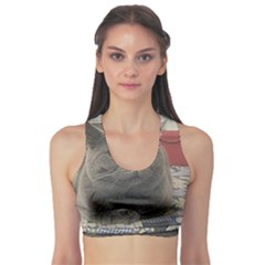 British Shorthair Grey Sports Bra